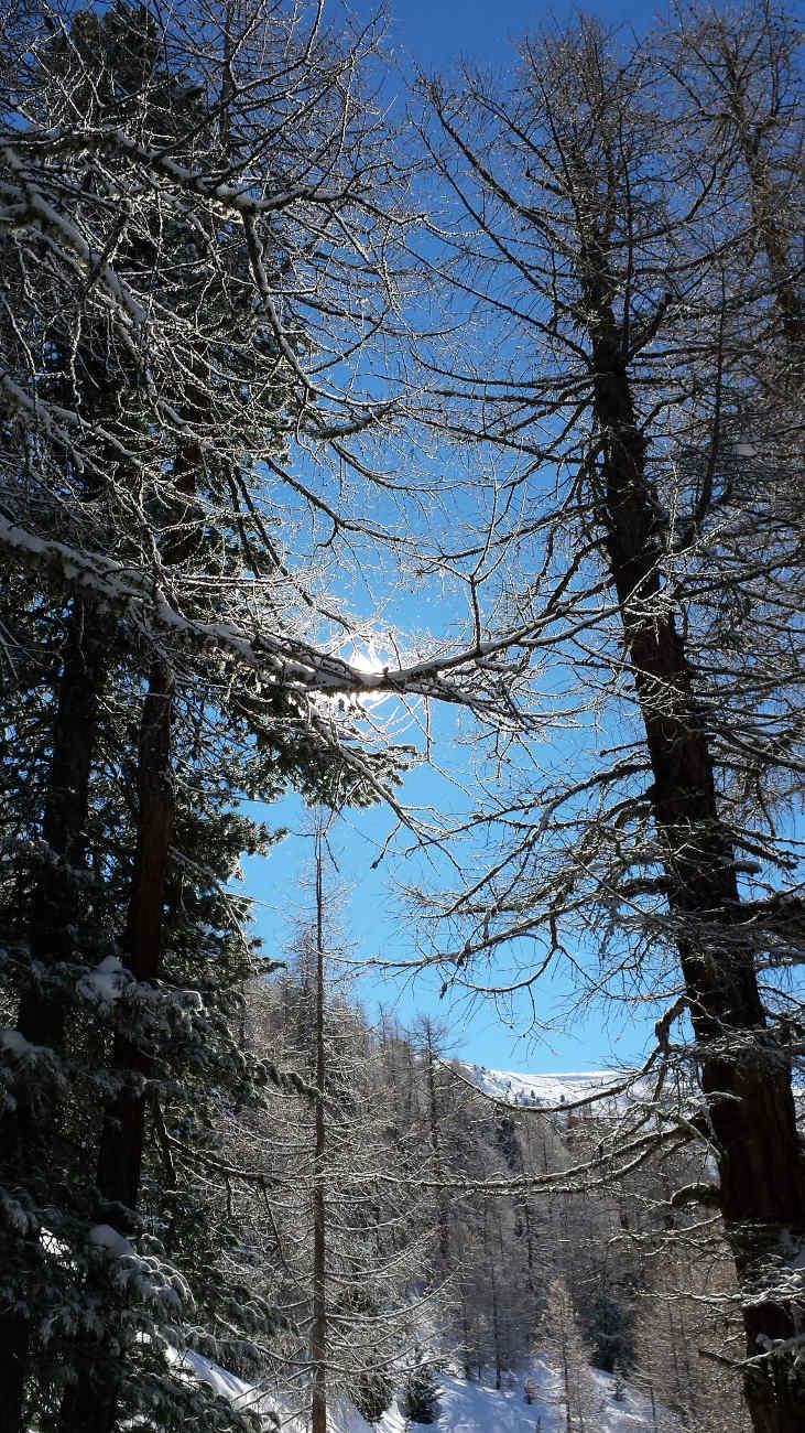 winterwanderung zermatt
